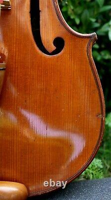 FRENCH OLD 19th century VIOLIN after Andreas Borelli. Listen to the video