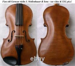Old German Master Violin Mollenhauer & Sons Video Antique 225