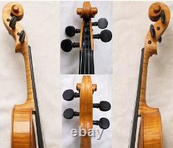 Beautiful Rare Old Da Salo Violin Antique Vidéo 212