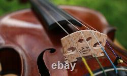 Écoutez La Vidéo! 19ème Siècle Vieux Beau Conservatoire Allemagne Violon