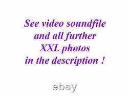 Fine Old Lionhead Violon Vidéo Antique Rare Lion Head 292