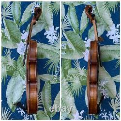 Old Vintage Amati Violon 4/4 Antique Belle Flamme Un Pc Dos