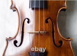 Violine Du 19ème Centurage - Voir Vidéo Anticique Master 328