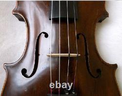 Violine Violine Video Antique Violino 468