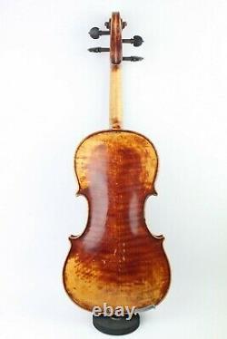 Violon, Stradivari Hellier Modèle 1679, Étiqueté, Antique, Vintage, Vieux, Musique